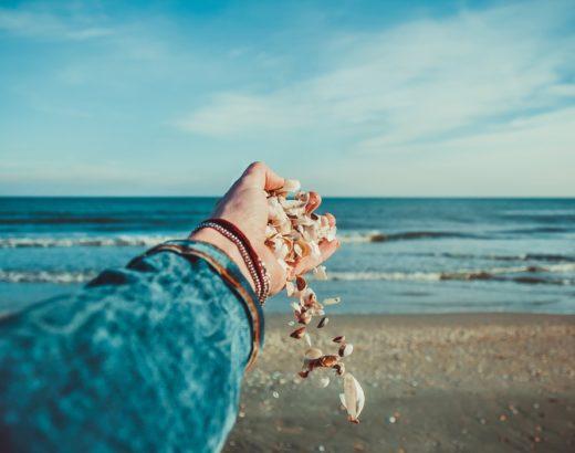 how to clean seashells
