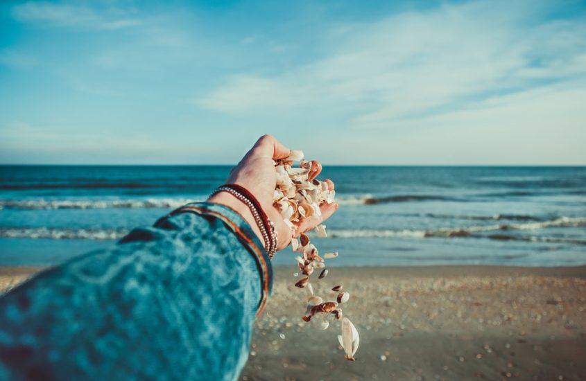 Top 5 Easy Ways to Clean Seashells