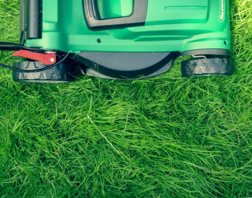 Disinfect Lawn Mower Blades