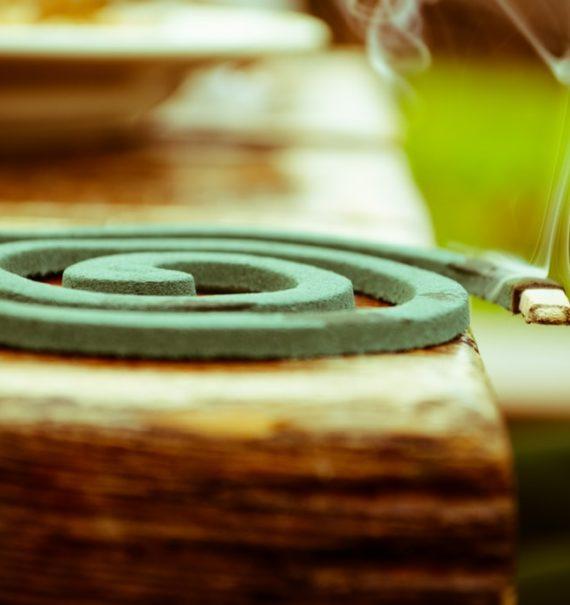 homemade mosquito coils