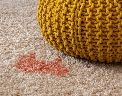 diy stain remover for carpet