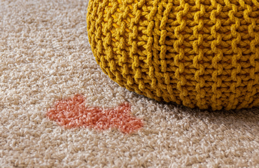 The 8 Best Homemade DIY Stain Remover for Carpets